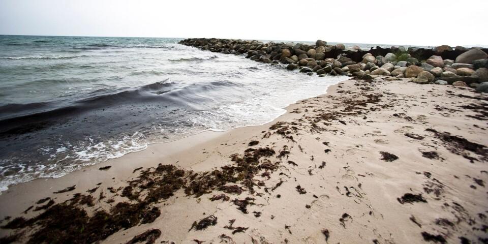 En av sex hövder som byggts längs Löderups strandbad.
