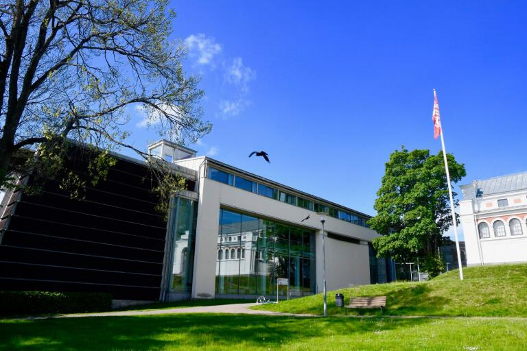 Kulturparken Småland ställer ut både föroreningar och granen under sommaren.