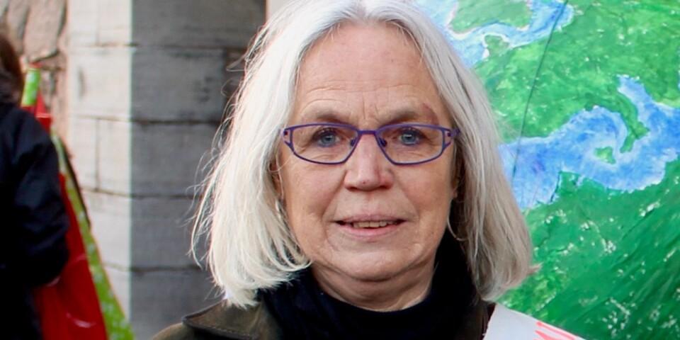 Aina Hagberg, Fridays for future Kalmar.