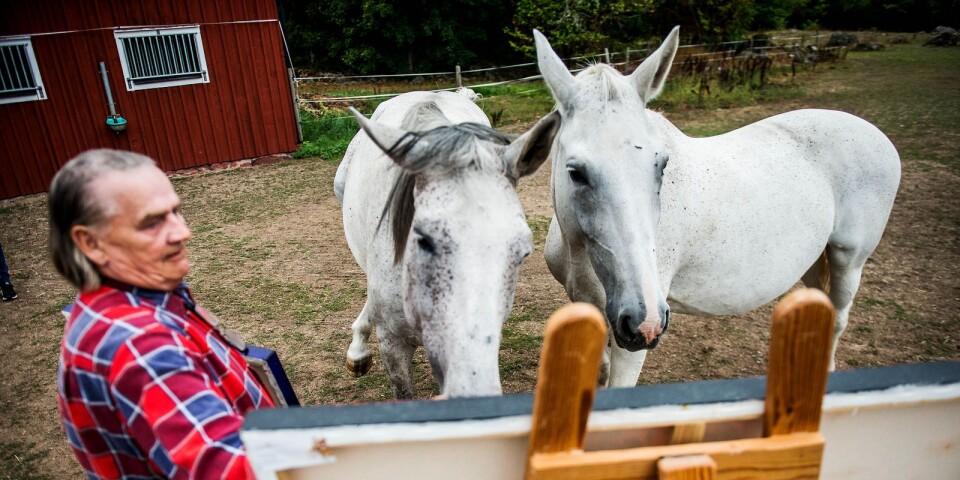 Binette och Lusette betraktar Mikko Vainios konst.