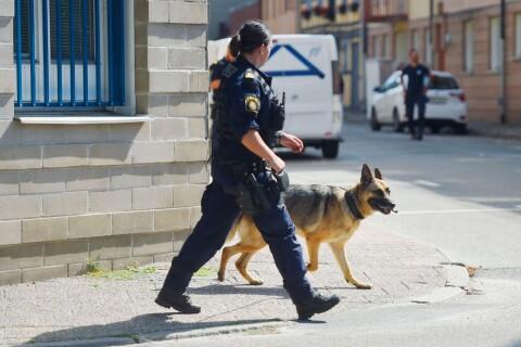 """Polisen om våldsdådet: """"En komplex historia"""""""