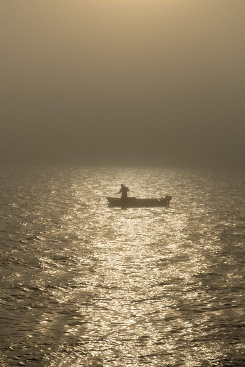 """""""Och havet som ger och tar, det väldiga havet som älskar Österlen, sjunger om det avlägsna och främmande, det som här vid denna kust och här i detta land inte är skrämmande utan lockande, det som är hemligheten men också tillhörigheten, det som är hembygden och mysteriet."""" Tomas Löfströms texter passar väldigt väl till Lena Måndotters Österlenfotografier."""