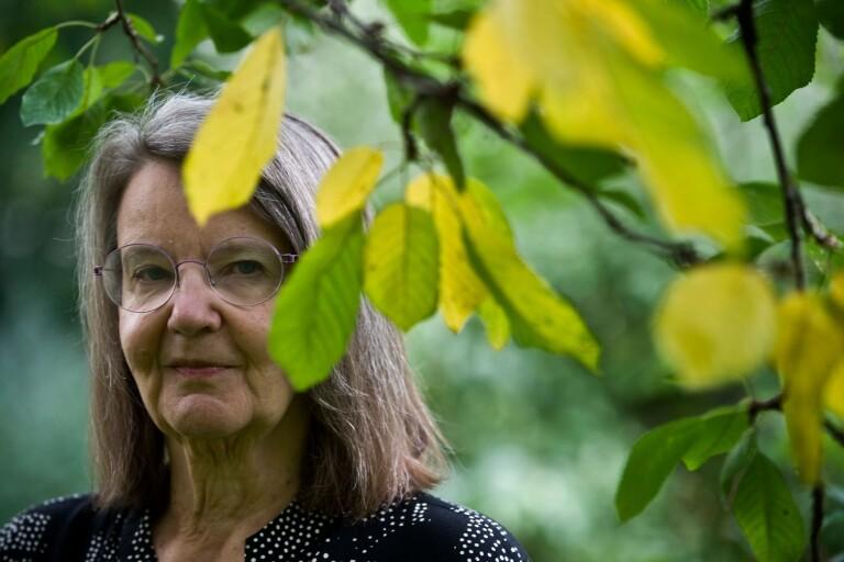 """Eva Ström: """"Som författare är jag van att ha mitt hem som arbetsplats"""""""