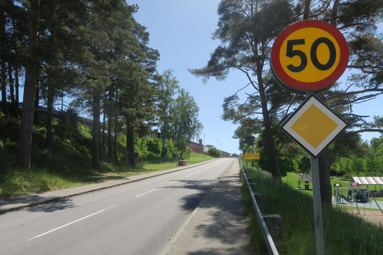 Förläng 30 km/h-sträckan söder om Högavångsskolan. Ett av flera trafiksäkerhetshöjande förslag intill skolområden som Sverigedemokraterna lagt.