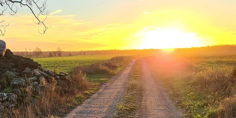 Here comes the sun little darling. Att hitta sekunder av ljus o solsken är mitt livselixir o nödvändighet under november. Letar efter soluppgångar, solnedgångar, tillfälliga öppningar i molntäcket, skriver veckans Ögonblicksfotograf.