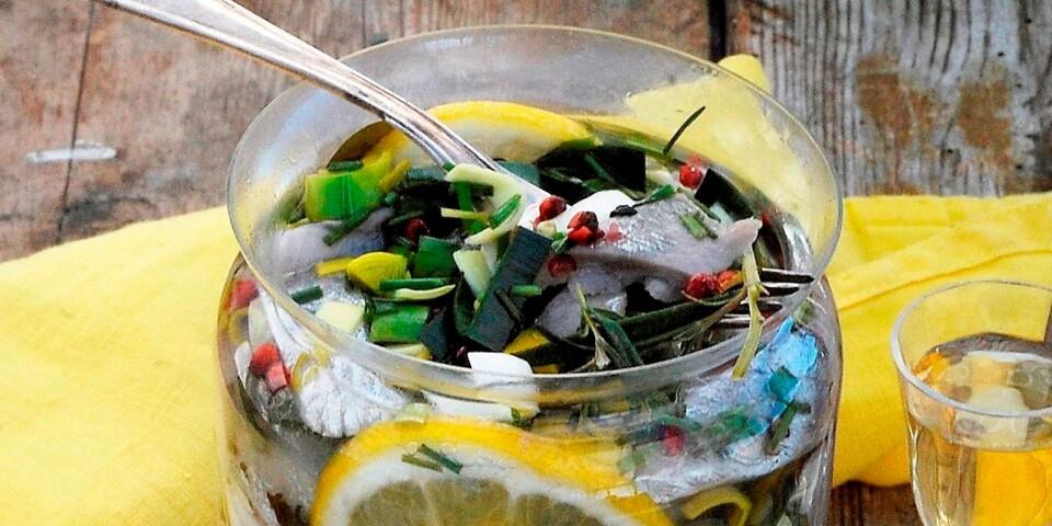 En klar sillinläggning med citron och örter. Den måste förberedas minst ett dygn innan.