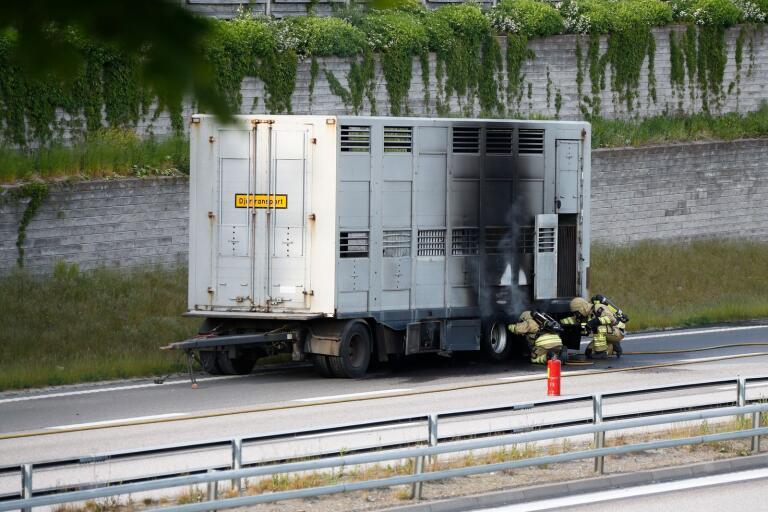 JUST NU: Här fattar lastbil eld på R40 – vägen avstängd