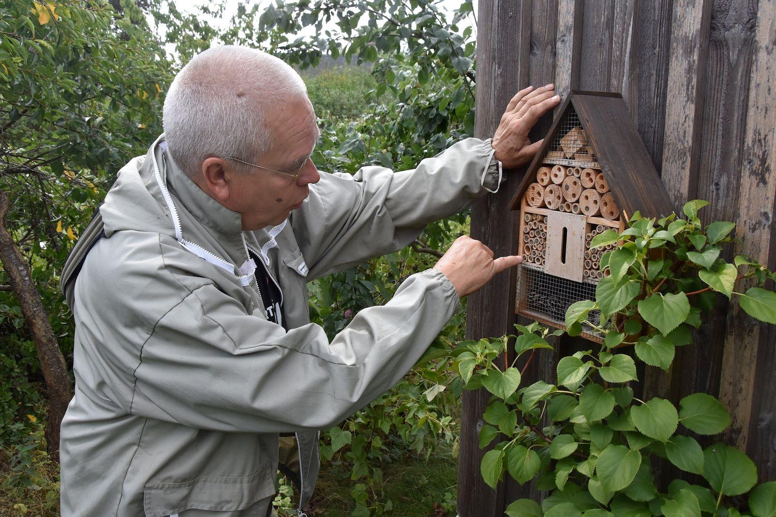 Vildbina, som det finns omkring 200 arter av i Sverige, är egentligen ännu viktigare för växtriket – och därmed allt levande på Jorden – än de odlade bina. Därför har Bo Herou också satt upp ett antal bihotell för vildbin på sin tomt.
