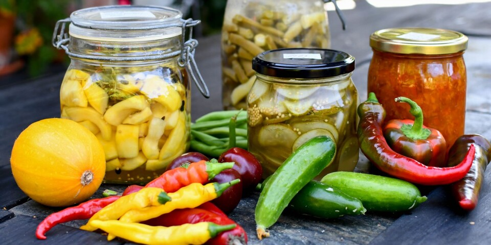 Inlagd gul squash, mjölksyrade haricots verts, inlagd delikatessgurka och paprika/chilimarmelad att njuta av hela året.