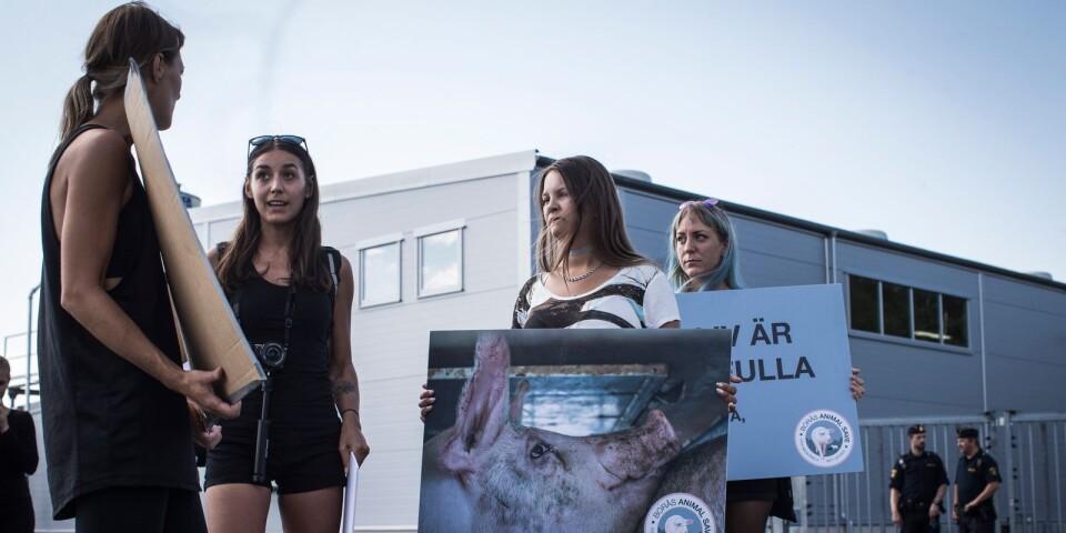 Delar av Borås Animal Save, med initiativtagare Elise Hansson näst längst till vänster.