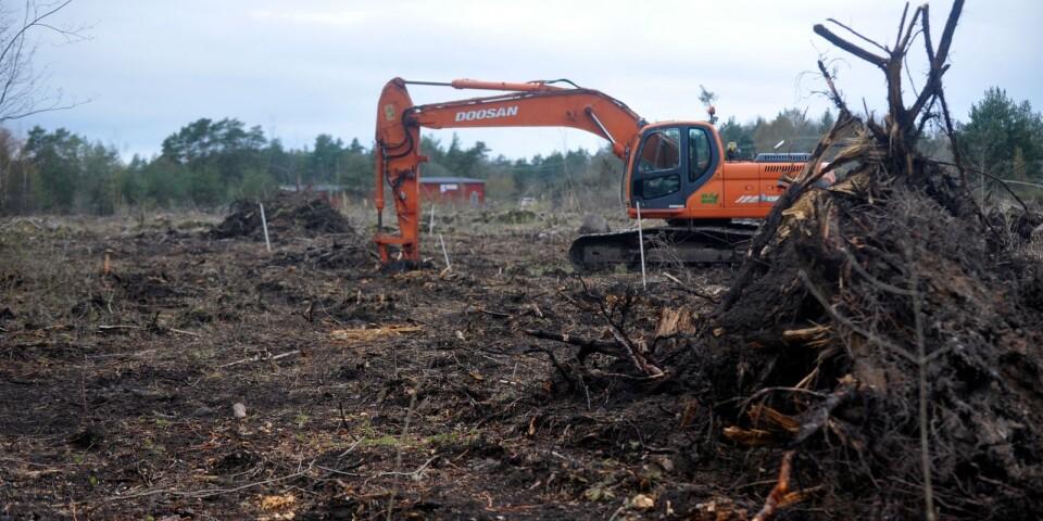 Sedan i vintras har Ölands GK röjt undan skogsmarker för att kunna bygga en ny bevattningsdamm.