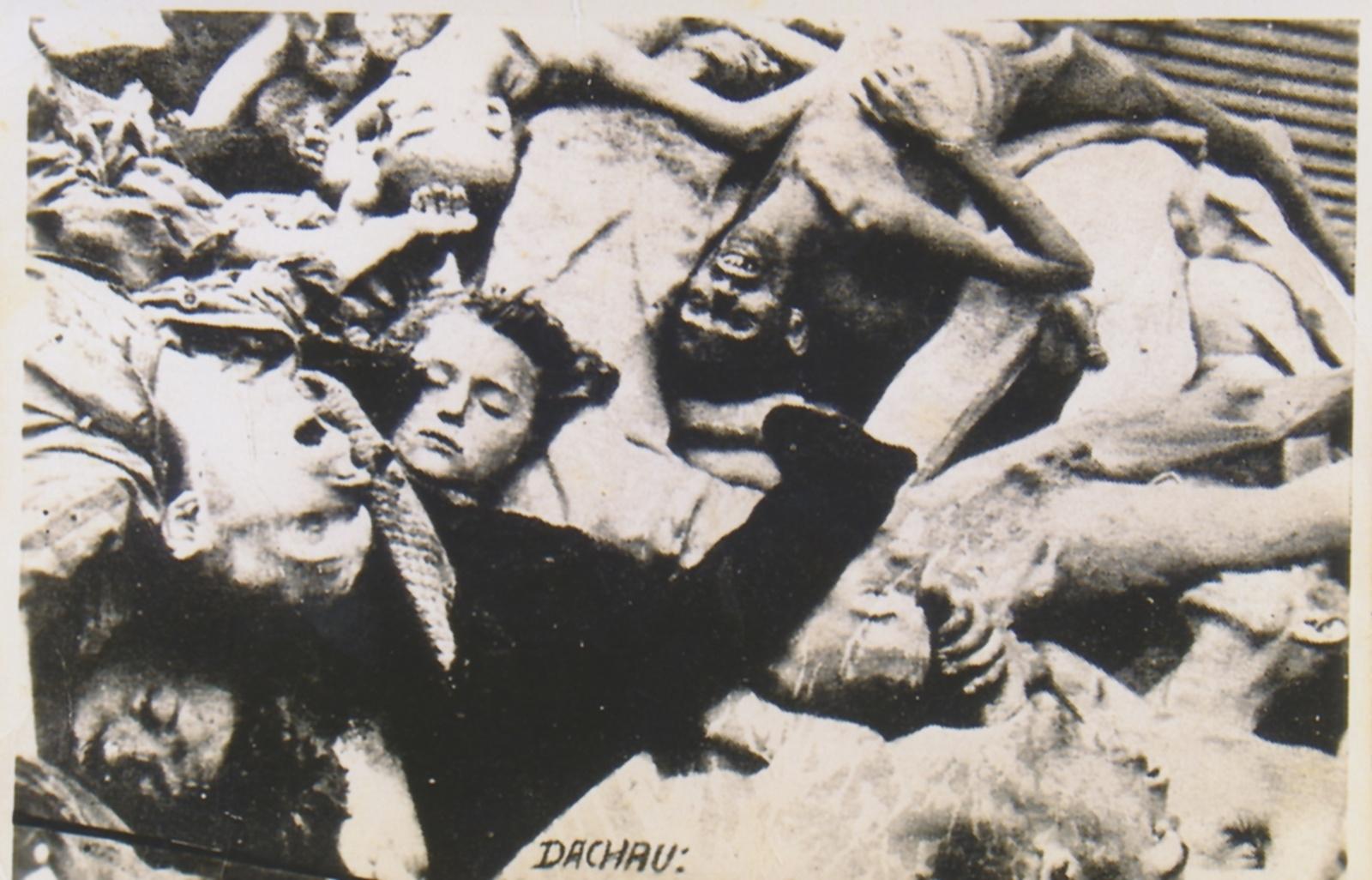 När fångarna befriades ur koncentrationslägren fick de med sig foton från de allierade som bevis för vad de hade utstått.
