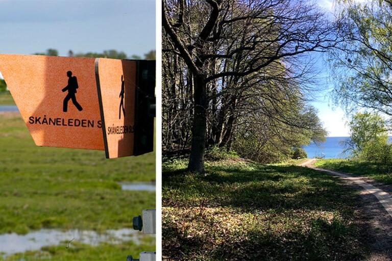 Vandra i väst och i öst – ta en dagstur längs Skåneleden