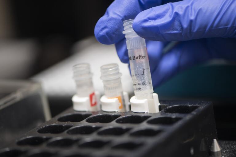 En labbingenjör från uppsalaföretaget A23 lab förbereder en pipetteringsrobot med PCR-plattor. Företaget analyserar coronaprover.