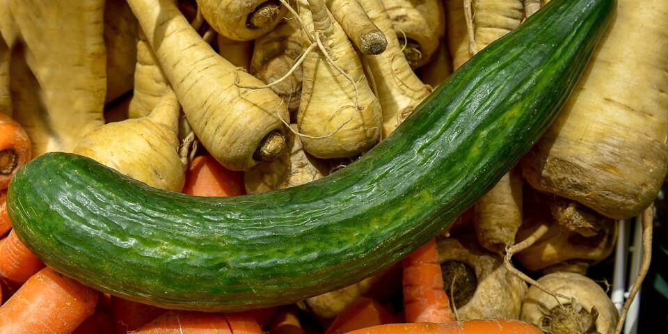 Genom att ta tillvara kasserade grönsaker man kan producera mer biogas.