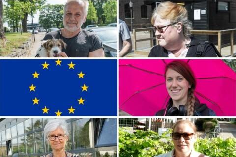 Enkät: Vad avgör hur du röstar i EU-valet?