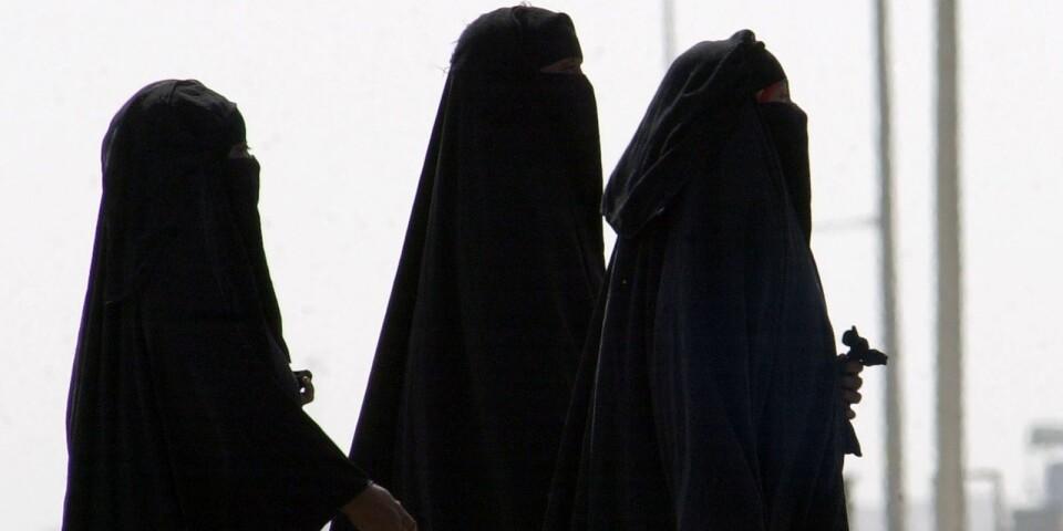 förenade arabemiraten kvinnor