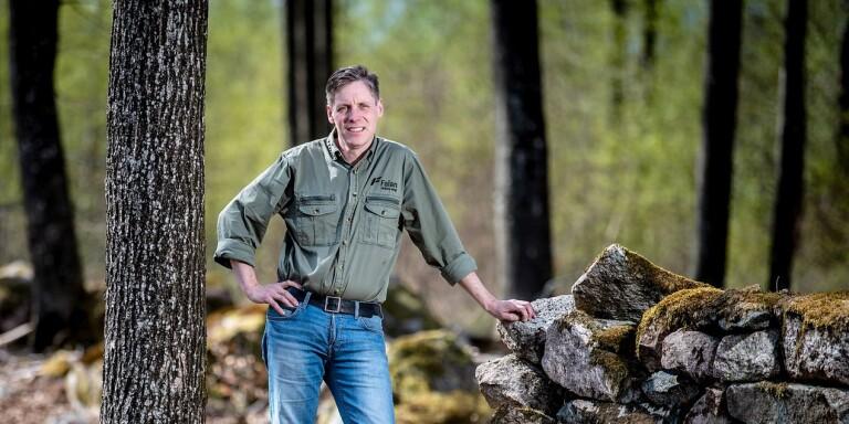 Affärsliv: Miljonsatsning för Falan Skog