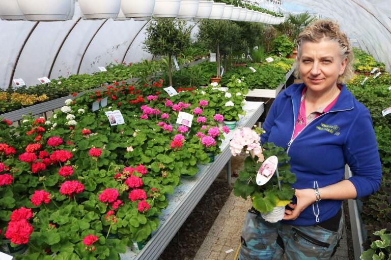 Trädgårdstips: Det är du som styr din egen trädgård