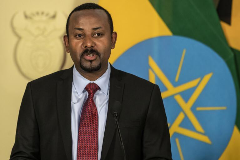 TPLF:s ledare jagas efter regimens intåg