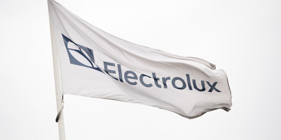 Vitvarujätten Electrolux vinstvarnar för det fjärde kvartalet sedan verksamheten i Nordamerika har fått oväntat höga kostnader. Arkivbild.