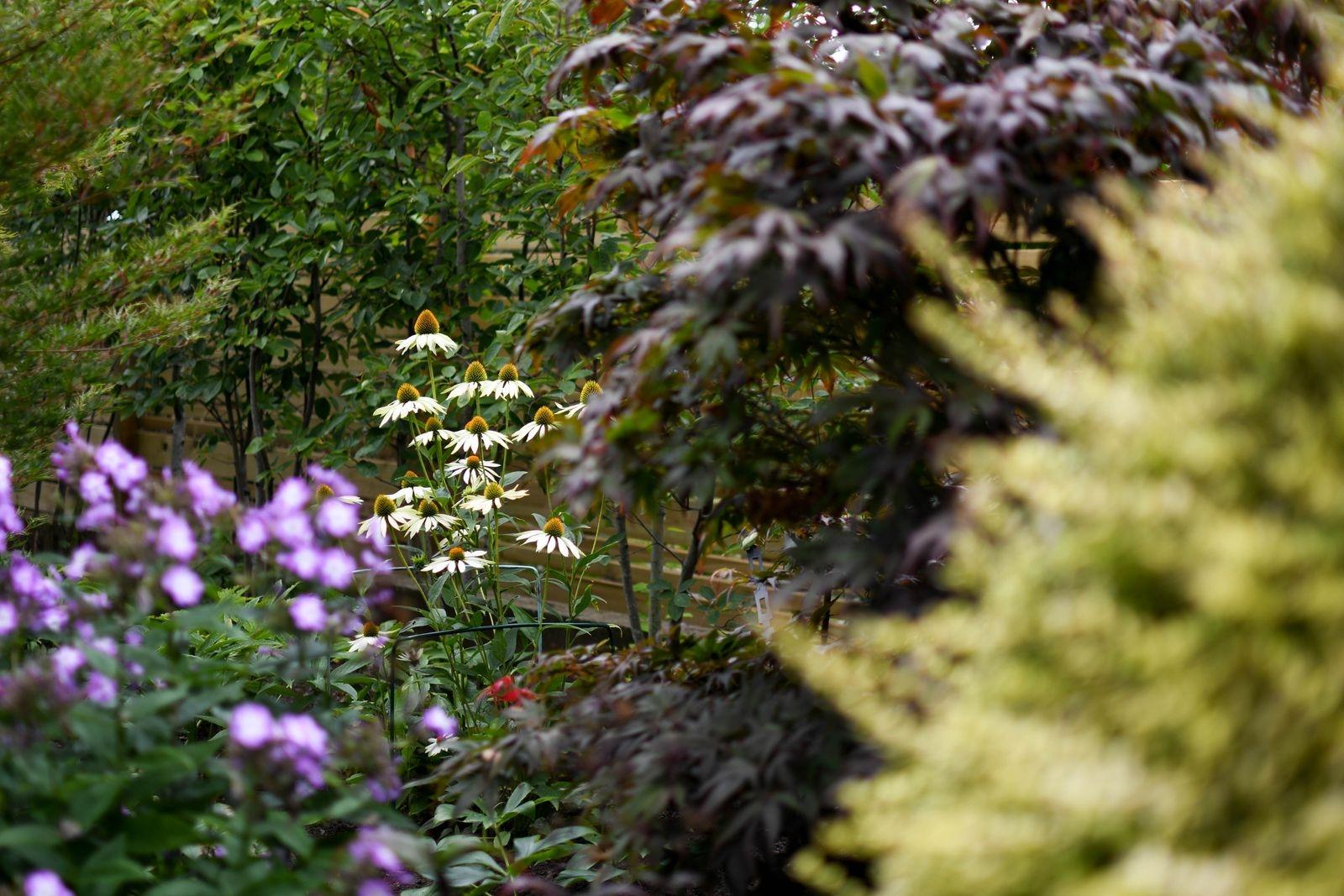 Det blommar från februari till november på Höstgatan, en trädgård målad med en palett av både blommor och blad i välkomponerat samspel.