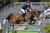 Hästsport: Sverige på tredje plats i lagtävlingen i EM