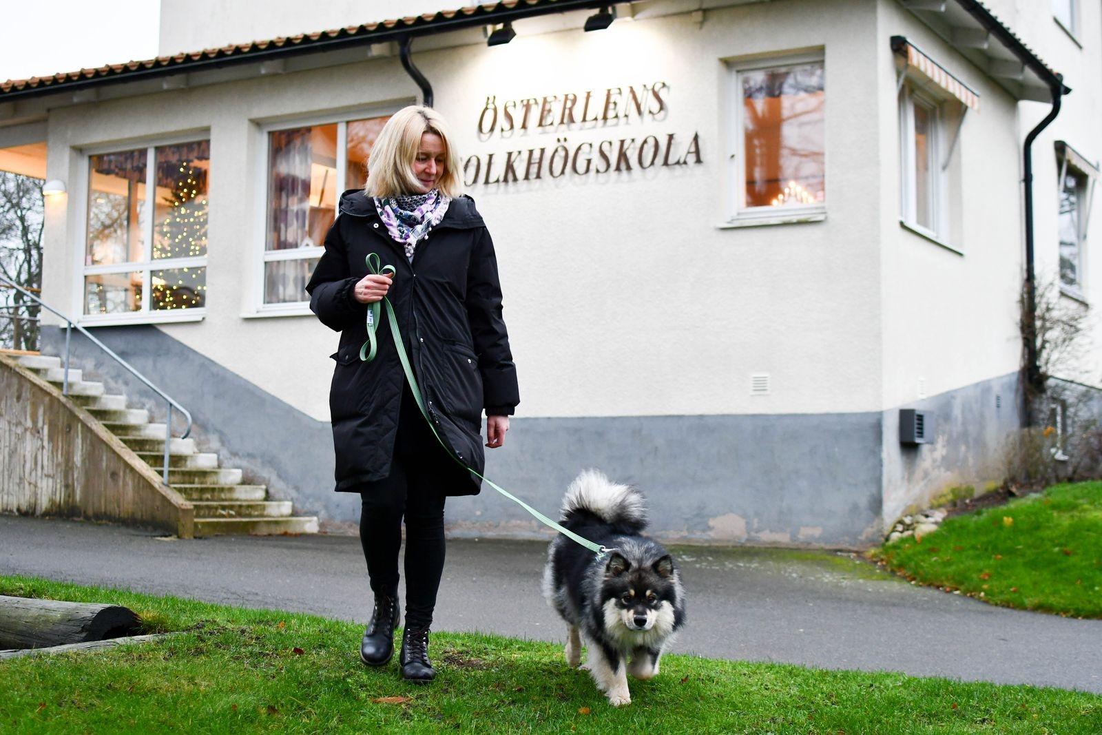 Utvalda dagar har Helena Bengtsson sällskap i jobbet som kurator på Österlens folkhögskola av finska lapphunden Eila, 1,5 år gammal. Eila har nyligen inlett sin praktikperiod i utbildningen till tearpihund.