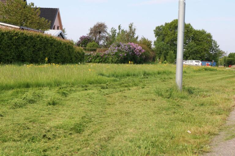 Första randklippningen är redan gjord. Kommunen klipper gräset några meter in från vägkanterna, och lämnar resten till att växa högt.