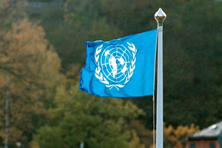 Fagerhults skola firade FN-dagen grundligt