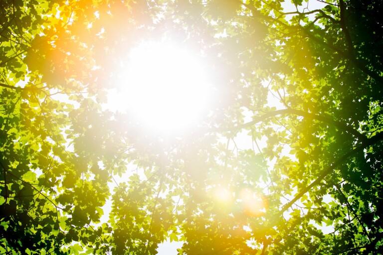 """SMHI: Soligt i Blekinge – """"En ordentlig sväng av sommarvärmen"""""""