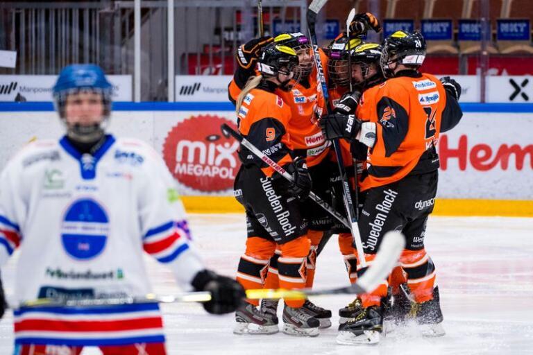 Karlskrona HK fick segerjubla efter söndagens 1–0-seger hemma mot Hvidovre IK. Arkivbild.