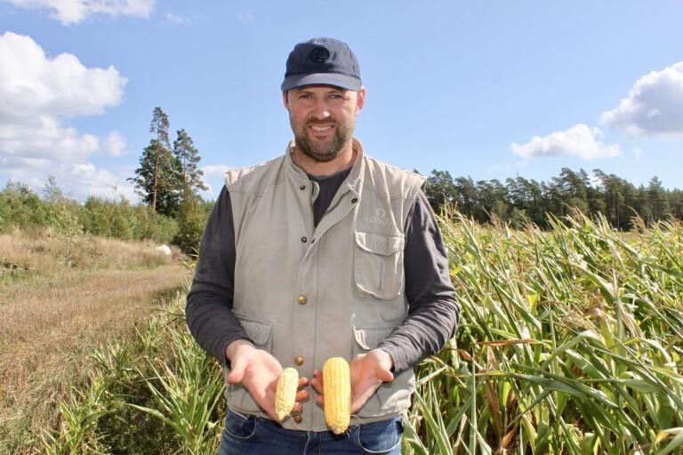 """Efter torkan: """"I första hand måste vi säkra upp att korna får mat"""""""