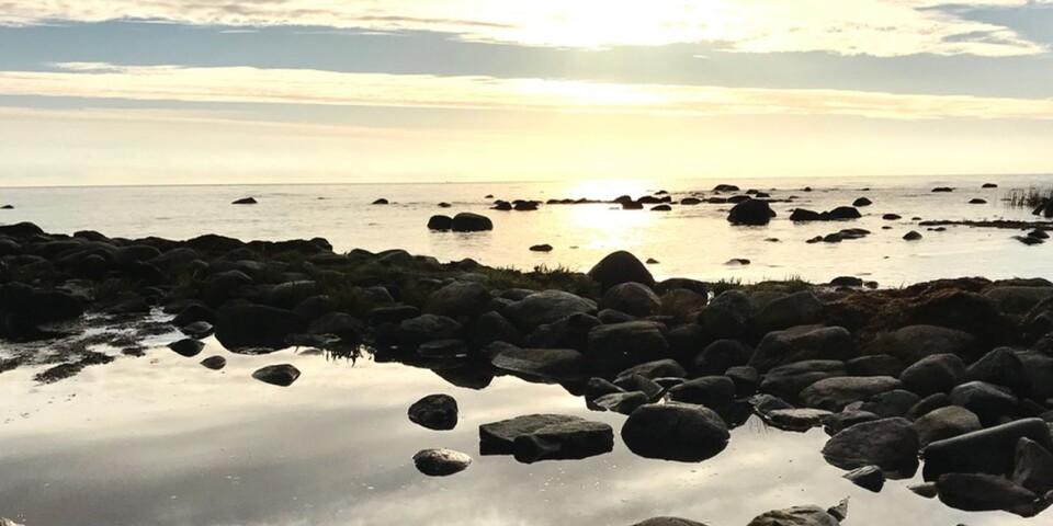 Vid Nyby orde tog veckans Ögonblicksfotograf gryningsbilden för en vecka sedan.