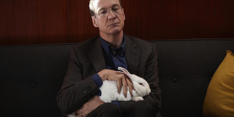 """Jim (David Thewlis) och kaninen Benjamin i """"Hedersgästen"""". Pressbild."""
