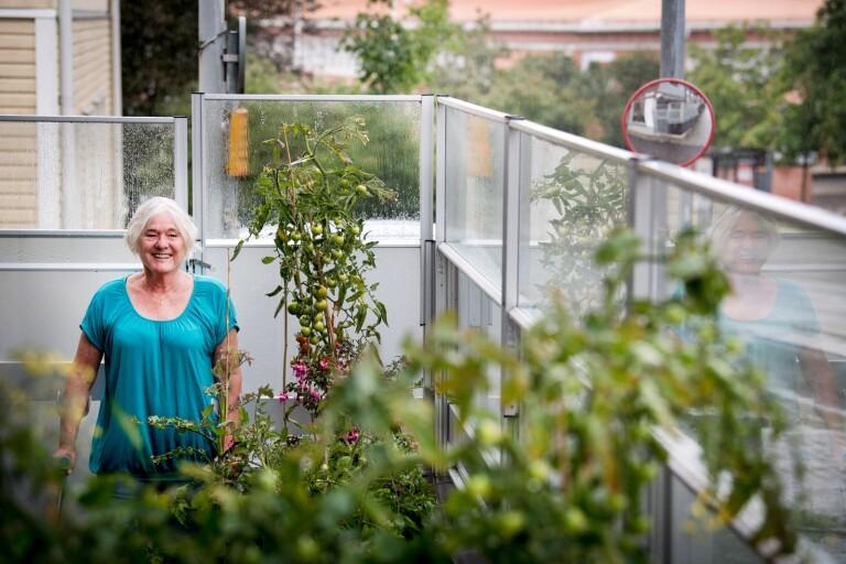 """Margaretha Olsson om S-krisen: """"Kan inte både avgå och sitta kvar"""""""