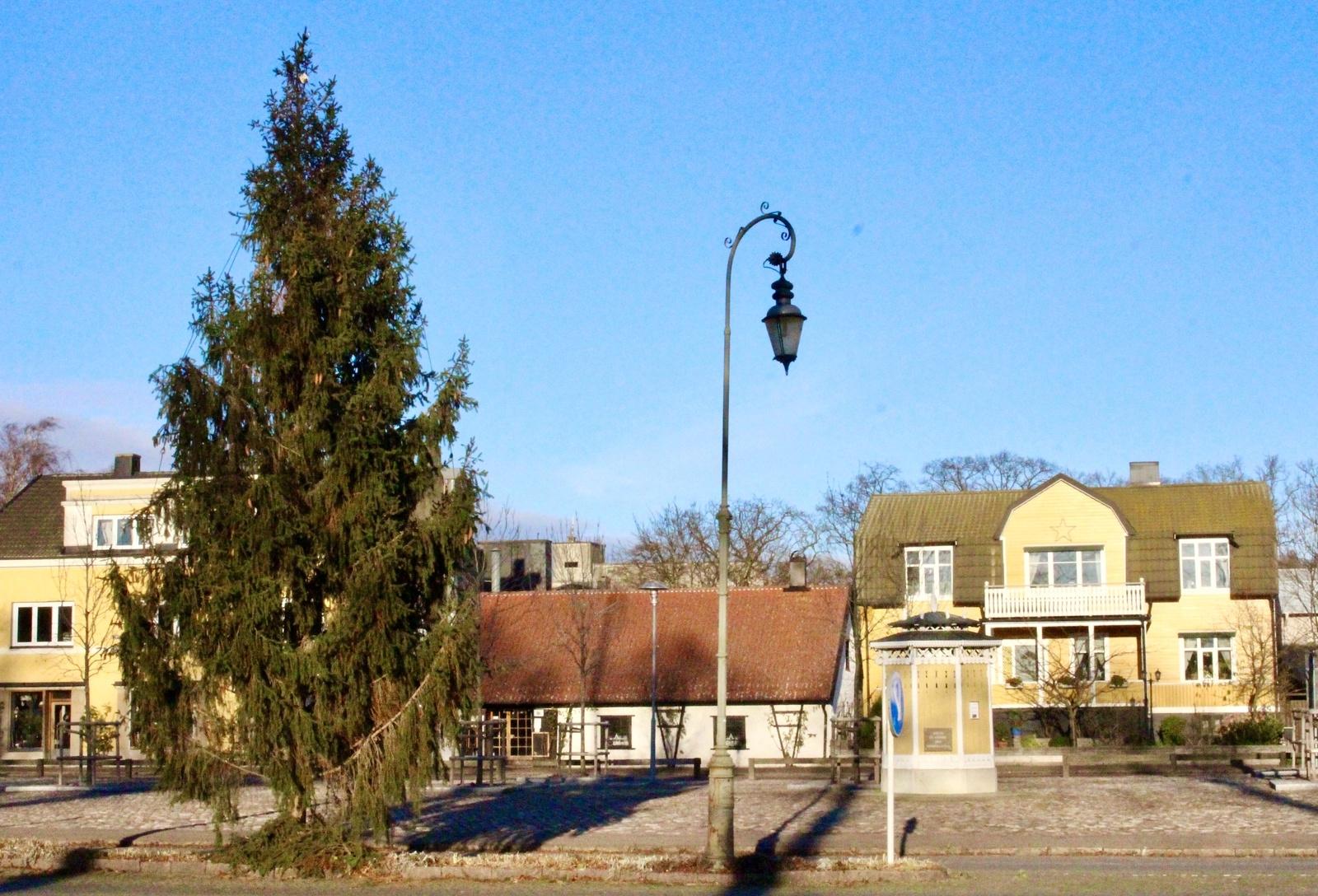 MÖRBYLÅNGA: Granen på Mörbylånga torg, hämtad från kommunens mark.
