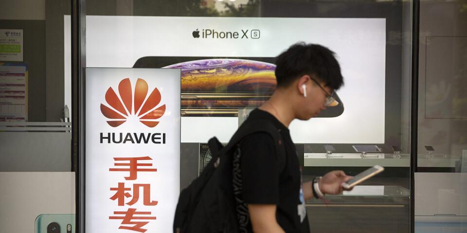 Huawei har det kämpigt. Experter spår ras på uppemot en fjärdedel av antalet levererade smarta telefoner.