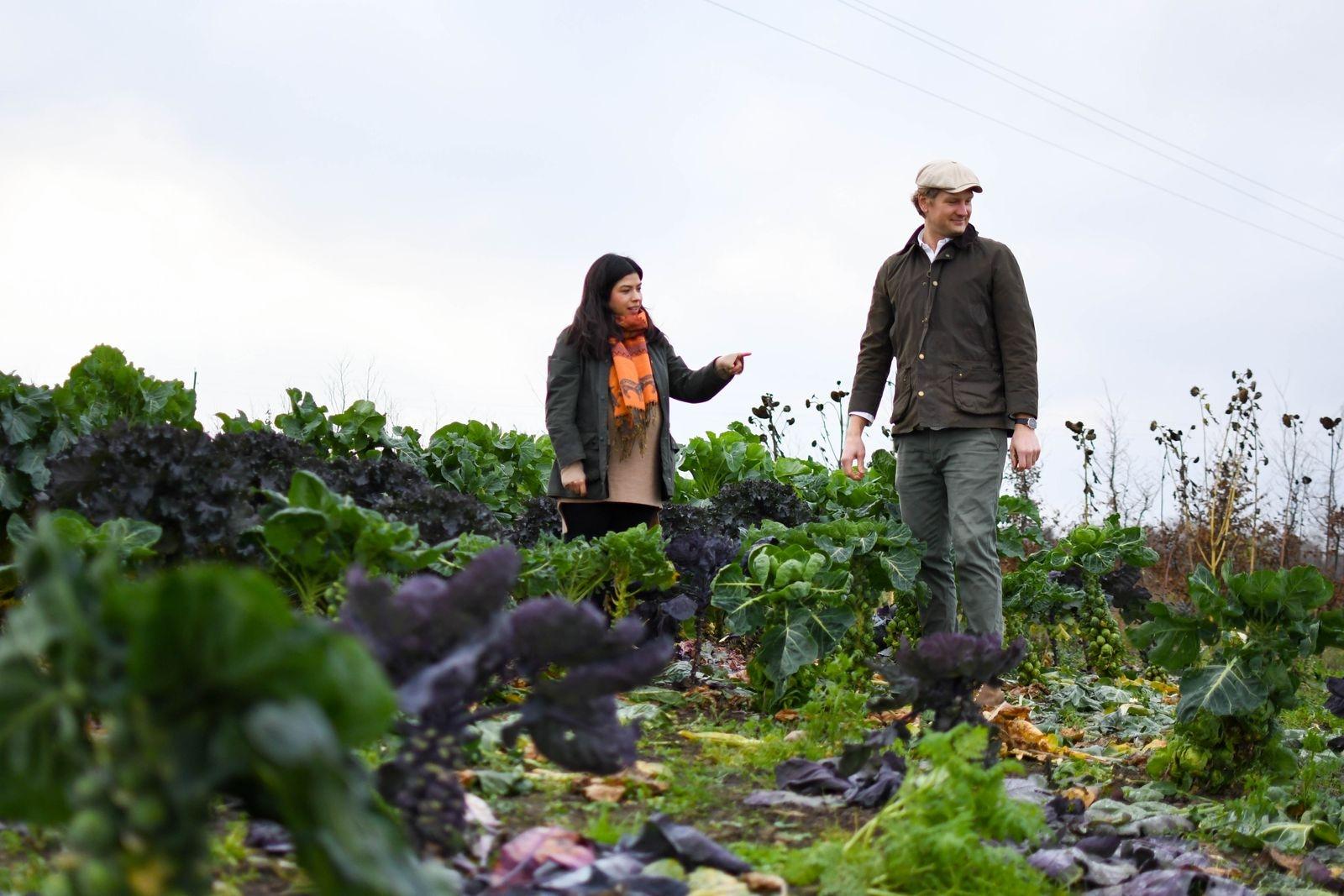 """Köksträdgården växer för varje år och förser restaurangköket med det mesta som serveras. """"Det är viktigare för oss att utöka odlingarna än antalet sittplatser, för att vi ska kunna hålla den höga kvalitet som vi strävar efter""""."""