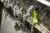 Coronaeffekt: Munskydd och plasthandskar korkar igen avlopp
