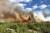 Brandrisk i stora delar av landet