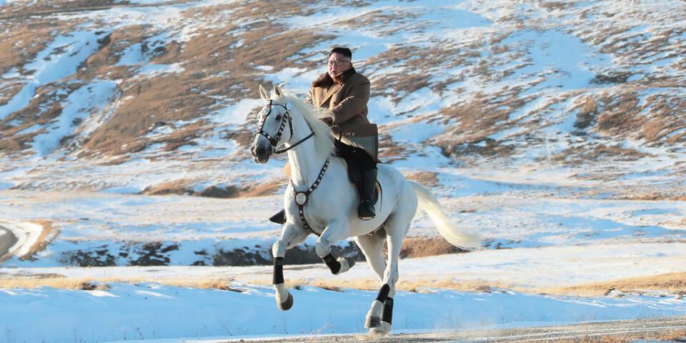 Kim Jong-Un till häst. Foto har getts ut av Nordkoreas regering. Inga oberoende journalister var välkomna under händelsen.
