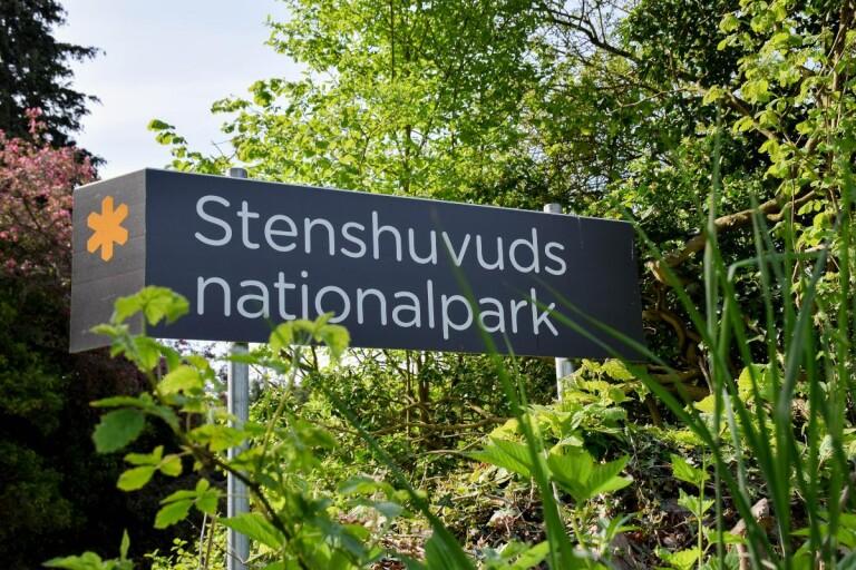 Aktiviteter för stora och små på Stenshuvud