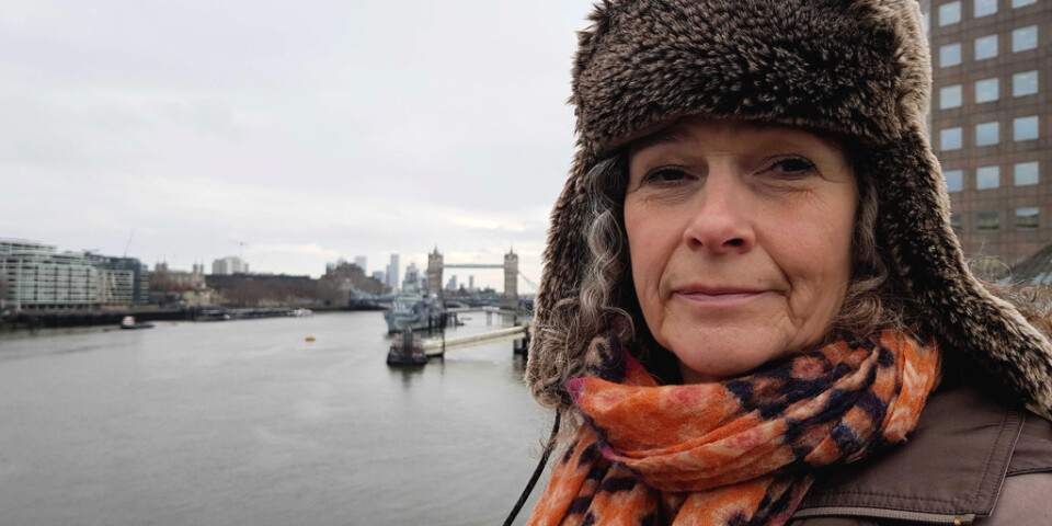 Jane Ponton kanske röstar taktiskt på Liberaldemokraterna för att stoppa Konservativa partiet att vinna i den valkrets i London där hon röstar.