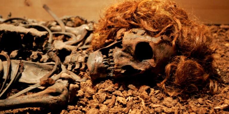 Linnéuniversitetet: Forskare får över åtta miljoner – ska forska om mänskliga kvarlevor