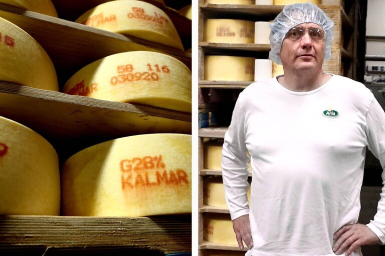 """Så tillverkas 15 500 ton ost i Kalmar: """"Igång dygnet runt"""""""