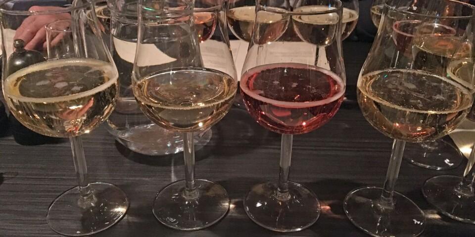 Champagneprovningen med Magnus Fritzell är förberedd.