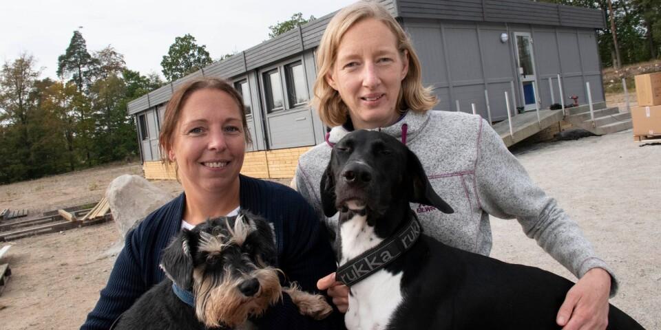 Jennie Olofsson och Andrea Collin öppnade en veterinärmottagning.