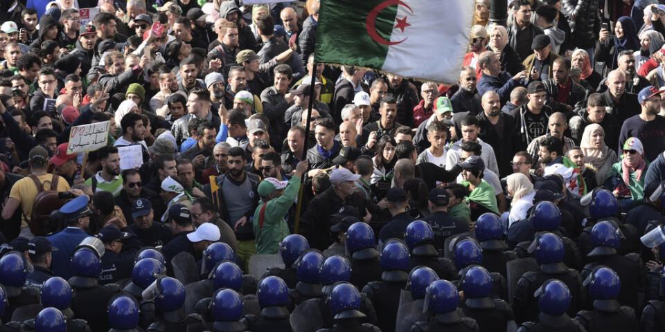 Säkerhetsstyrkor möter algeriska demonstranter under en protest 11 december 2019.