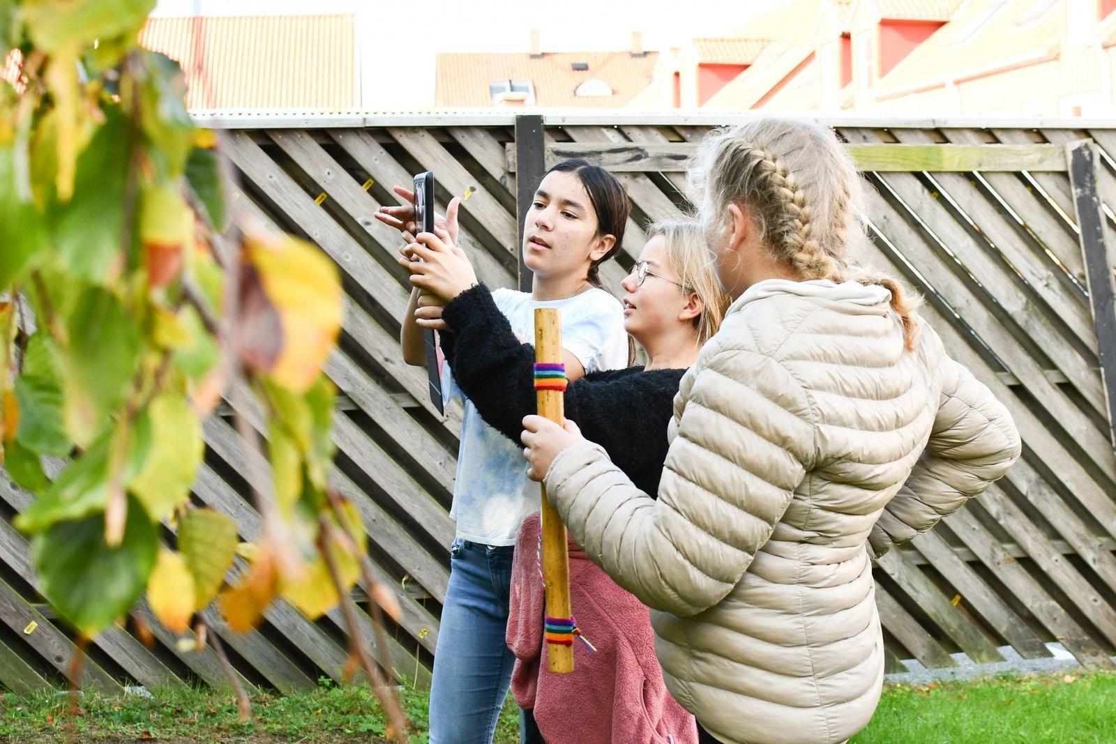 Qudsia Froogh, Edith Åkesson och Ella Andersson i färd med att filma en sekvens bland björkens bladverk.